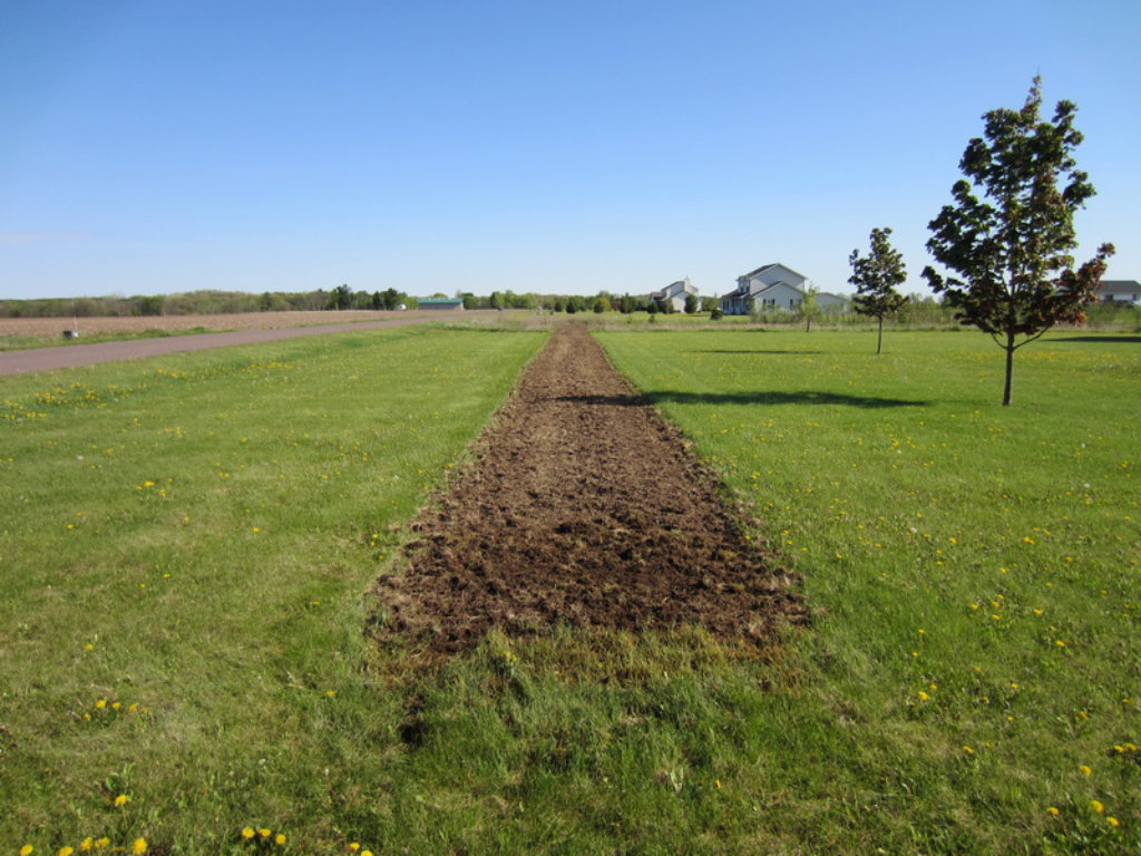 Site preparation should include removing all vegetation and smoothing the  area out for a weed barrier. Good site preparation is critical in  maximizing the ... 37f2088a9918e
